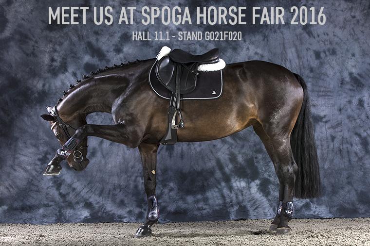Acavallo at Spoga Horse 2016