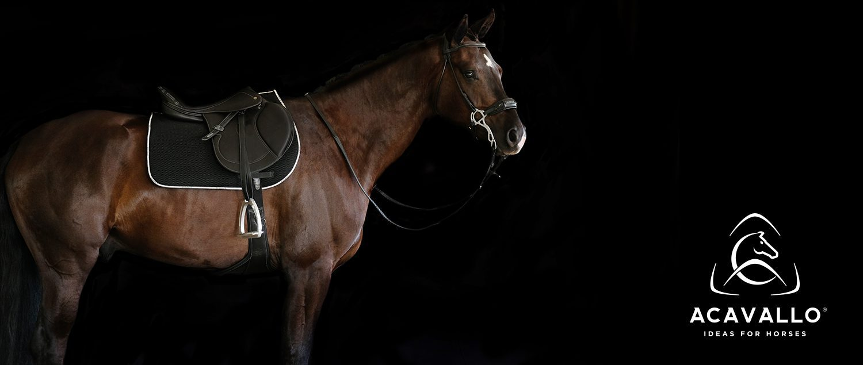Galletti Bentivoglio Lavora Con Noi acavallo - ideas for horses